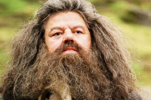 Olej na bradu alebo balzam? Po týchto tipoch bude vaša brada ako zdrevorubačského katalógu