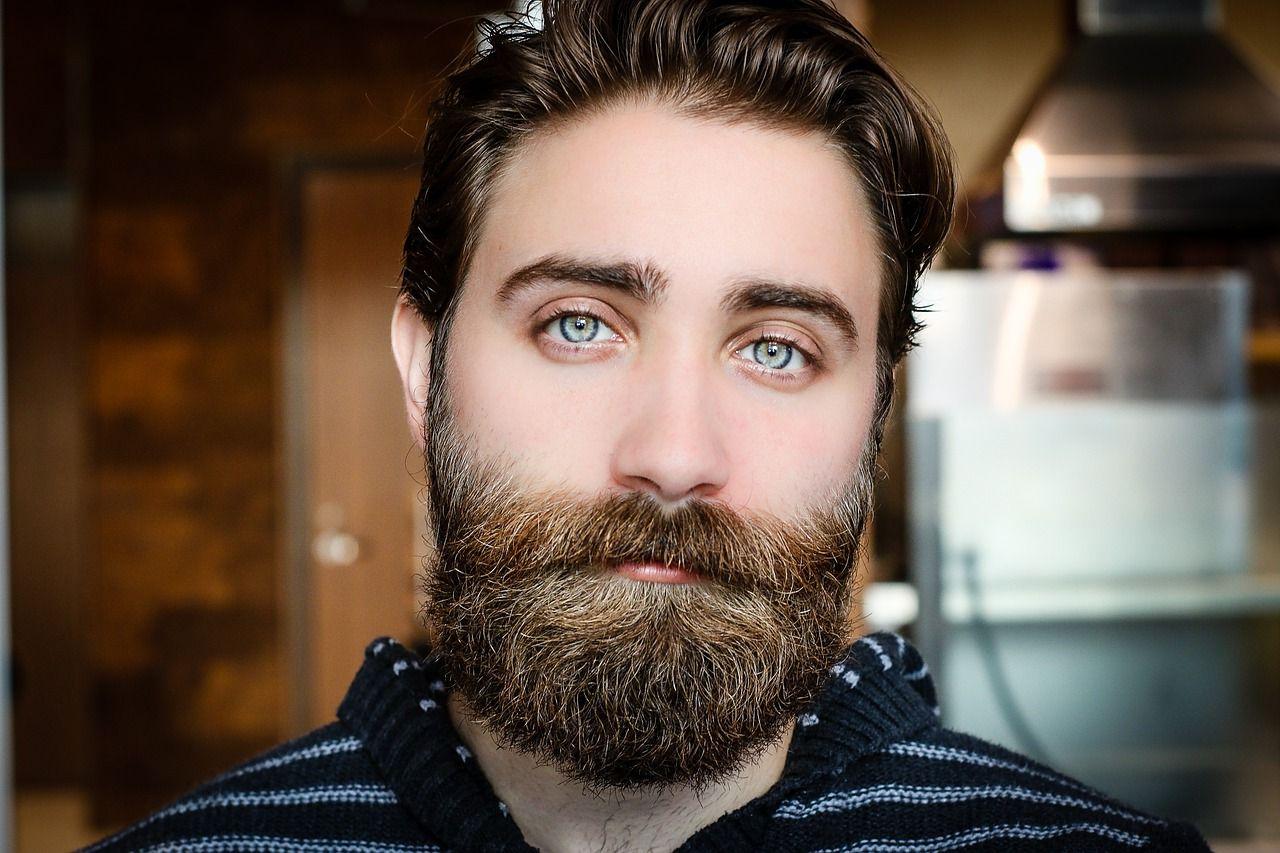 uprava brady
